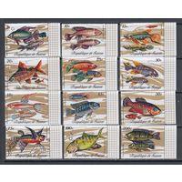 Тропические рыбы Фауна моря 1971 Гвинея MNH полная серия 12 м зуб