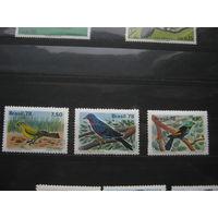 Марки - Бразилия фауна птицы 1978