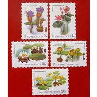 СССР.  Водные растения. ( 5 марок ) 1984 года.