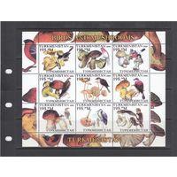 Совы Грибы Хищные Птицы Фауна 2000 Туркменистан MNH полная серия 9 м зуб лот РАСПРОДАЖА
