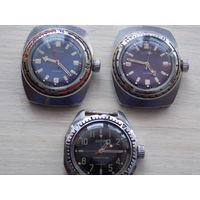Часы восток амфибии