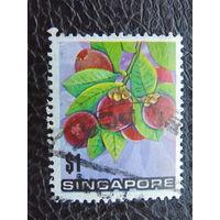 Сингапур. Плоды.
