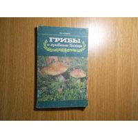 Фомина В. И. Грибы и грибные блюда
