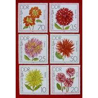ГДР. Цветы. ( 6 марок ) 1979 года.