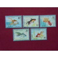 Вьетнам 1989г. Рыбы.