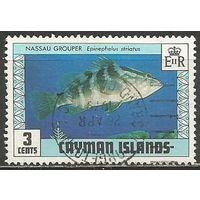 Кайманы. Рыбы. Бурополосая черна. 1979г. Mi#425.