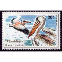 1 марка 1975 год Руанда Пеликан 711
