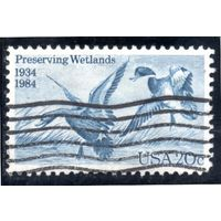 США.Ми-1701. Маллард (Anas platyrhynchos). Серия: Закон о сохранении водоплавающих птиц, 50-летие. 1984.