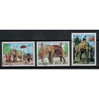 Лаос /1994/ Фауна / Животные и Люди / Праздники / Белый Слон /  Серия 3 Марки