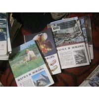 Наука и жизнь отдельные номера 1983-6,12. 1984-6.1978-5. 1981-3,6.