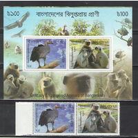 Бангладеш Обезьяны гриф 2012 год чистая полная серия из 2-х марок и беззубцового блока