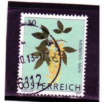 Австрия. Ми-2679.Scotch Laburnum (Laburnum Alpinum) Серия: Альпийские цветы. 2007.