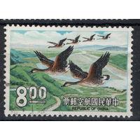 Китай 174