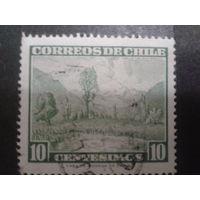 Чили 1961 стандарт, ландшафт деревья