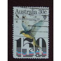 Австралия 1984г. Птицы.