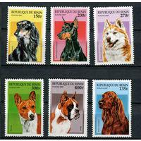 Бенин - 1997 - Собаки - [Mi. 936-941] - полная серия - 6 марок. MNH.