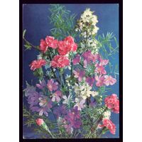 1978 год Г.Костенко Цветы чист
