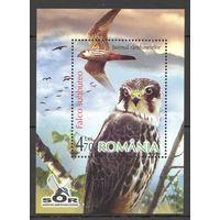 2007 Румыния Фауна Птицы блок