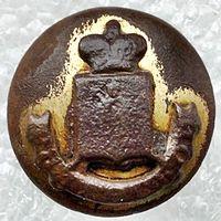 Рязанской губернии 1831-1857  Юнкинъ 22 мм
