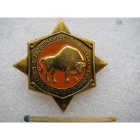 Значок. Белорусский Республиканский совет по туризму и экскурсиям