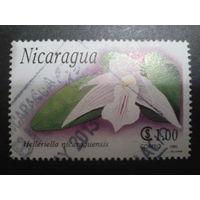 Никарагуа 1991 орхидея