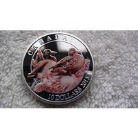 Канада 10$ 2013г. Утки. цветная. распродажа