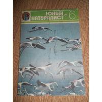 Журнал Юный натуралист 1980 #6