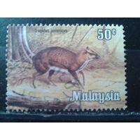 Малайзия 1979 Фауна