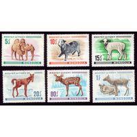 6 марок 1968 год Монголия Скот 482-485,488-489