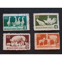 Болгария 1955 г. Домашние животные. Полная серия.