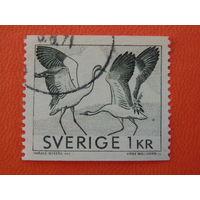 Швеция. 1971 Птицы.