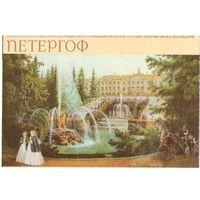 Билет в Банный корпус Петергоф