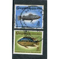 Гайана. Рыбы