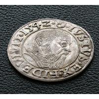 Грош 1542, Пруссия (ленник Польши), Альбрехт Гогенцоллерн. Остатки штемпельного блеска, коллекционное состояние