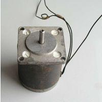 Электродвигатель синхронный с электромагнитной редукцией ДСР-166-1 1988 год