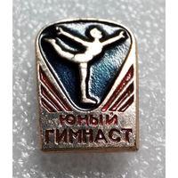 Значок. Юный гимнаст #0084