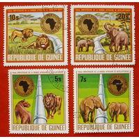 Гвинея. Животные. ( 4 марки ) 1975 года.