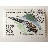 Мадагаскар 1993. Рыбы. Акулы