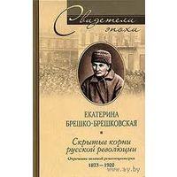 Скрытые корни русской революции. Отречение великой революционерки.
