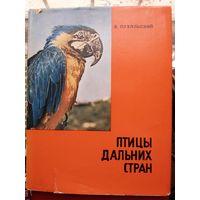 Птицы дальних стран. Фотоальбом.