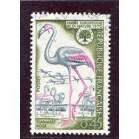 Франция. Европейский год природы. Розовое фламинго
