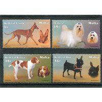 Мальта. Породы собак