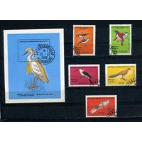 Мадагаскар 1986г, птицы, 5м. 1бл.