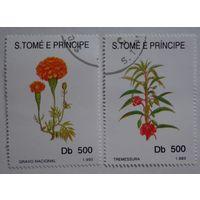 Сан-Томе и Принцип.1993.цветы