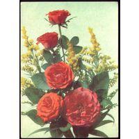 1990 год И.Дергилёв Розы и мимоза