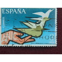 Испания. Птицы.