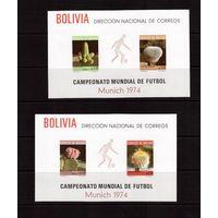 Боливия-1973(Мих.Бл.36-37) **, Спорт, ЧМ-1974 по футболу, Кактусы