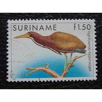 Суринам 1985г. Фауна.