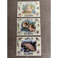 ОАЭ. Дубай. Коралловые рыбы
