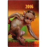 Календарик 2016. Год обезьяны #4